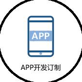 APP开发制作